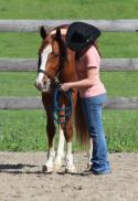 This is the first moment Madi met her 3 yr old gelding Smart Cutting Doc \